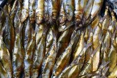 Os arenques fumado dourados pescam vendido no mercado molhado aéreo imagem de stock royalty free