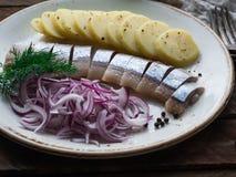 Os arenques pescam com fatias das batatas e a cebola vermelha Imagens de Stock Royalty Free