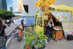 Os ativistas 2015 de Hong Kong marcham antes do voto no pacote eleitoral Fotografia de Stock