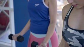 Os atletas fêmeas que fazem o peso do bíceps ondulam no gym vídeos de arquivo