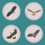 Os aves do triângulo voam animais Imagens de Stock