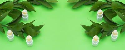 Os bálsamos de bordo e as folhas naturais do verde com cópia espaçam no centro foto de stock royalty free