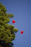 Os balões voam no céu fotografia de stock royalty free