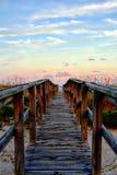 Os Beachgoers, assim como a tartaruga de Gopher, usam o passeio à beira mar de madeira como uma autoestrada pessoal a e do oceano foto de stock