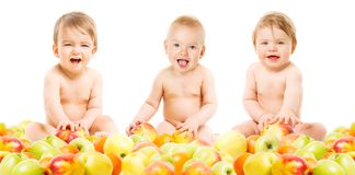 Os bebês agrupam nos frutos, nas crianças infantis felizes que sentam-se nas maçãs e nas laranjas, crianças de um ano no branco fotografia de stock