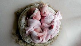 Os bebês gêmeos dormem na ucha nos vestidos vídeos de arquivo