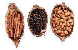 Os benefícios de beber o cacau e a aromaterapia quentes do cacau, canela, café para o rafrescamento da manhã, arranjaram tão perf Imagem de Stock