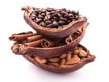 Os benefícios de beber o cacau e a aromaterapia quentes do cacau, canela, café para o rafrescamento da manhã, arranjaram tão perf Imagens de Stock