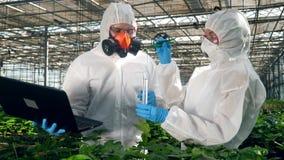 Os biólogos testam uma planta em uma estufa, pondo a em um tubo de teste filme