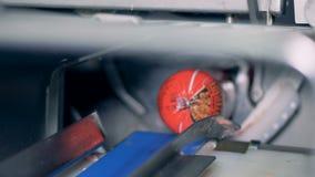 Os blocos da salsicha cozinhada estão sendo cortados e separados na fábrica da salsicha vídeos de arquivo