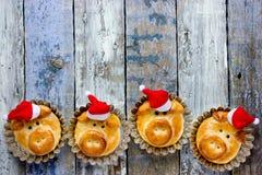Os bolos do pão do porco, ideia engraçada do cozimento deram forma às caras leitães bonitos imagens de stock royalty free