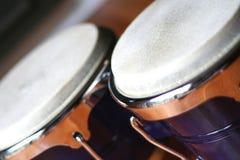 Os bongos fecham-se acima foto de stock