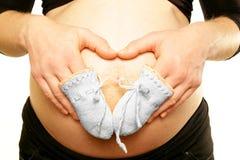 Os braços na mamã grávida incham a barriga que guarda a luva pequena minúscula de lãs Imagens de Stock