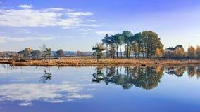 Os brejos tranquilos com nuvens refletiram na água calma, Turnhout, Bélgica imagens de stock royalty free
