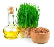 Os brotos do trigo, as sementes do trigo na bacia de madeira e o germe de trigo lubrificam Fotos de Stock Royalty Free