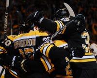 Os Bruins comemoram! Foto de Stock