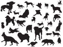 Os cães mostram em silhueta o jogo Fotografia de Stock Royalty Free