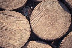 Os círculos de madeira apresentaram na terra na trilha fotos de stock royalty free