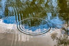 Os círculos dos pingos de chuva quebram acima na superfície da lagoa fotos de stock royalty free