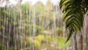 Os córregos das gotas da água fluem como a parede para o chuveiro pesado