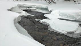 Os c?rregos do rio come?am a fluir entre tra??es da neve na floresta video estoque