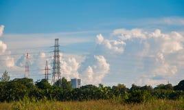 Os cabos altos do poder e da eletricidade da transmissão nas palmas estacionam foto de stock