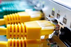 Os cabos de remendo amarelos são introduzidos nos portos do interruptor de um tipo fotos de stock royalty free