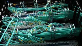 Os cabos verdes finos da vista inferior conectaram ao servidor de mineração filme