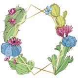 Os cactos do vetor florescem Wildflower selvagem da folha da mola isolado Arte gravada da tinta Quadrado do ornamento da beira do ilustração royalty free
