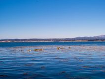 Os caiaque e os barcos flutuam em uma praia tropical do oceano no horizonte foto de stock royalty free