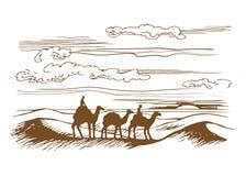 Os camelos estão no deserto Foto de Stock Royalty Free