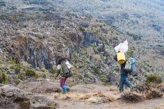 Os caminhantes carreg sacos pesados na montanha Imagens de Stock