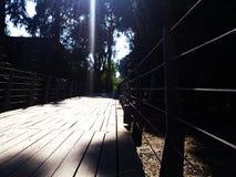 Os caminhos de aço são construídos com plataforma de madeira para o pessoa de passeio e de ciclagem Imagens de Stock