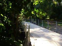 Os caminhos de aço são construídos com plataforma de madeira para o pessoa de passeio e de ciclagem Imagem de Stock