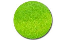 Os campos do arroz estão crescendo a esfera. Imagens de Stock