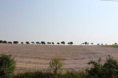Os campos e as florestas do dia de Rep?blica Checa em agosto imagem de stock