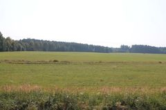 Os campos e as florestas do dia de Rep?blica Checa em agosto imagens de stock