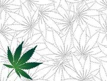Os cannabis folheiam - fundo sem emenda ilustração stock