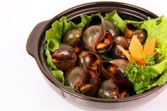 Os caracóis de Fried Vietnamese com pimenta e saladas em mekong denominam b foto de stock