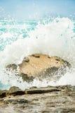 Os caranguejos que aderem-se a uma rocha como uma onda pesada deixam de funcionar Imagem de Stock Royalty Free