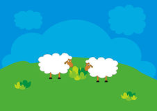 Os carneiros estão pastando Fotos de Stock Royalty Free