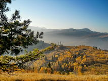 Os Carpathians surpreendentes Imagem de Stock Royalty Free