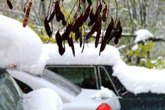 Os carros, cobertos com a neve durante um blizzard Fotografia de Stock