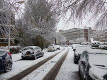 Os carros cobertos de neve estacionados na árvore nevado alinharam a rua urbana suburbana da cidade durante tempestades da neve e fotos de stock