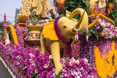 Os carros da parada são decorados com muitos tipos das flores no anuário 42th Chiang Mai Flower Festival foto de stock royalty free