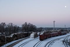 Os carros de estrada de ferro carregados com a floresta carregaram vagões fotografia de stock