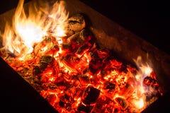 Os carvões ardentes de um BBQ foto de stock