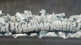 Os carvões para o assado são calorosos em um recipiente do metal Cozinhando o alimento na rua no verão video estoque