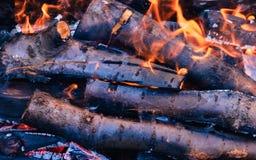 Os carvões quentes brilhantes e as madeiras ardentes na grade do BBQ pit Incandescência e carvão vegetal flamejante, assado Imagens de Stock