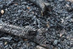 Os carvões sairam após um fogo foto de stock